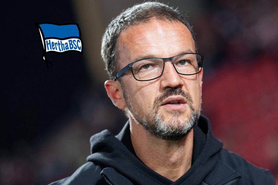 Zieht es Fredi Bobic jetzt zu Hertha BSC?