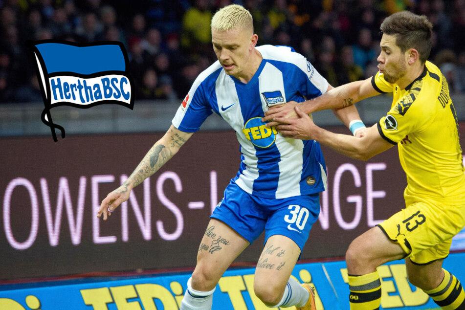 Hertha will Ablöse drücken: BVB-Leihgabe Marius Wolf soll bleiben