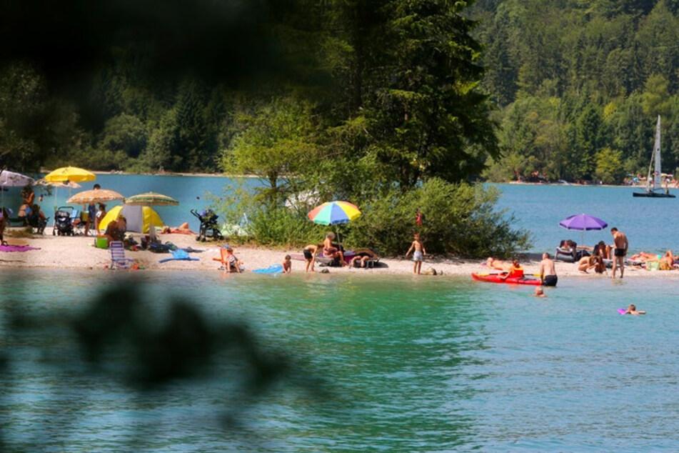 Zahlreiche Menschen baden im Walchensee in Bayern.