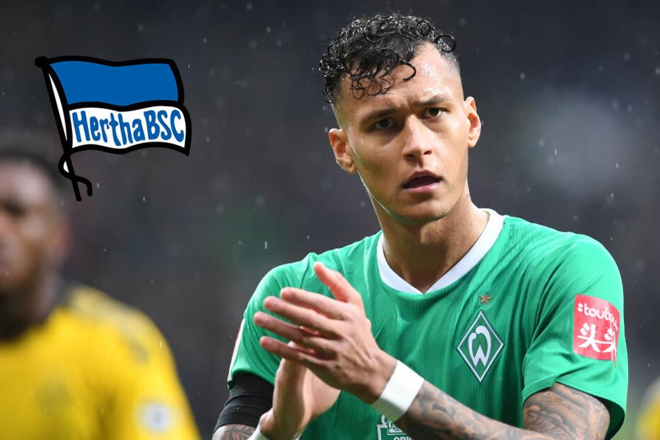 Wird Hertha-Leihgabe Selke doch noch billiger für Bremen?